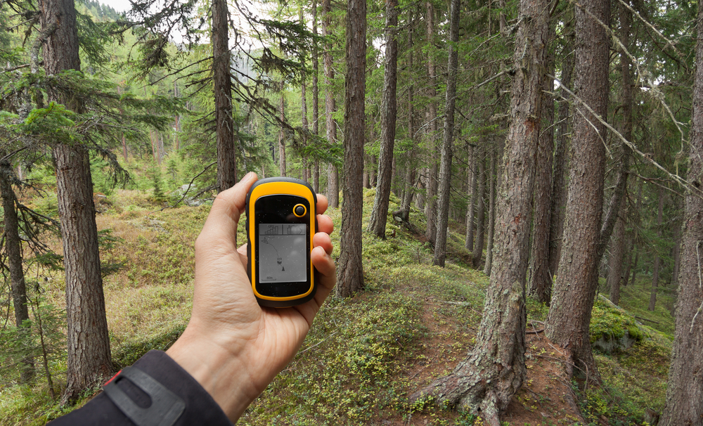 Using a hiking GPS in a forest