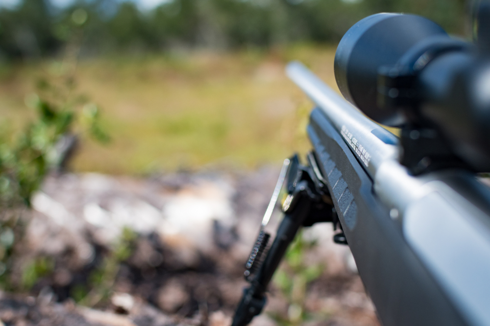 scoped hunting rifle resting on bipod